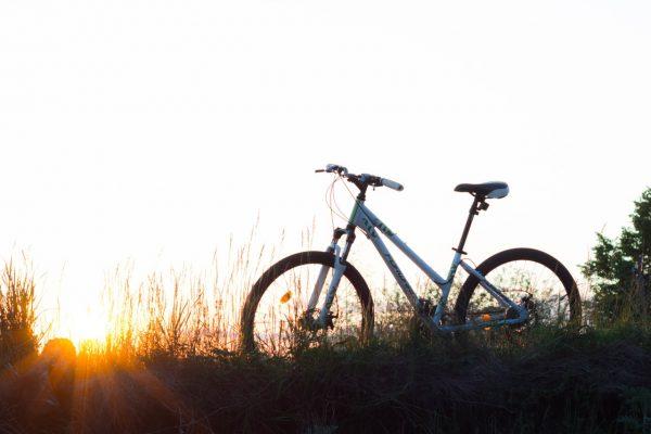 Mit dem E-Bike die Stadt und Umgebung erkunden